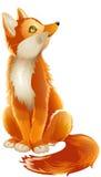 Sitting fox Stock Image