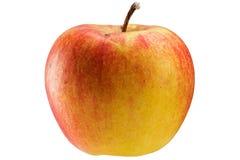 Multicoloured apple Stock Photos