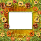 Multicoloured card for greetings Stock Images
