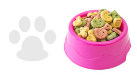Multicoloured dog biscuits Stock Photo