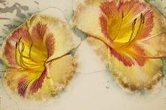 Multicoloured dzień leluja 3 zdjęcia stock