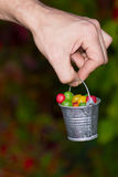 Multicoloured jelly beans candy in the bucket Royalty Free Stock Images