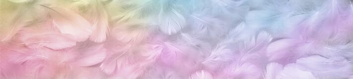 Free Multicoloured Pastel Coloured Angel Feather Message Banner Background Stock Photo - 173952660