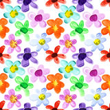 Multicoloured seamless floral pattern Royalty Free Stock Image