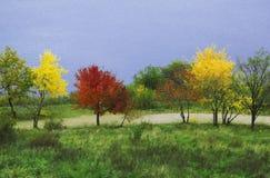 Multicoloured trees. National reserve island Khortytsya, Zaporizhzhya, Ukrainian Stock Images