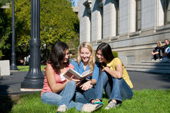 Multicultural Students on University Campus. Diverse ethnic Students on university campus. A photo of Asian, Hispanic and Caucasian students Royalty Free Stock Photos