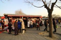 Multidão da compra Fotografia de Stock