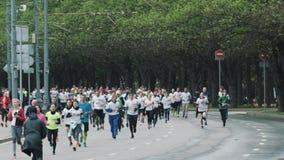 Multidão de maratona running dos povos desportivos na estrada no parque da cidade video estoque