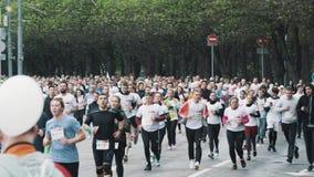 Multidão de maratona running dos povos saudáveis na estrada no parque da cidade video estoque
