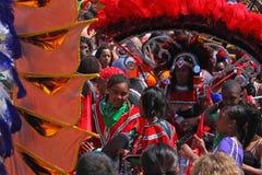 Multidão do carnaval Foto de Stock