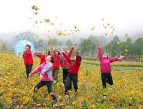 Multidão feliz Fotografia de Stock Royalty Free