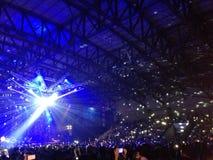 multidão que cheering no concerto imagem de stock