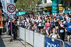 Multidões que correm na estrada através das ruas de Sydney para uma corrida do divertimento fotos de stock