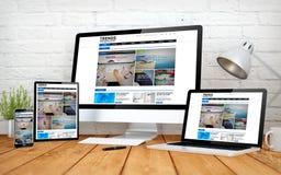 multidevices sensibles d'écran de conception de site Web d'emagazine illustration de vecteur