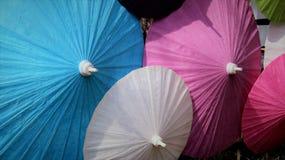 Multidinous mullbärsträd Peper Mubrella royaltyfria bilder