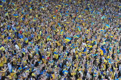 Multidão de fãs Imagens de Stock