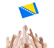 Multiethnic Arms Raised for the Flag of Bosnia Stock Photos