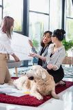 Multiethnic businesswomen looking at blueprint with dog at office. Smiling multiethnic businesswomen looking at blueprint with dog at office royalty free stock photos