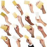 Diverse hands with business cards. Set, isolated on white. Multiethnic diverse hands holding empty business cards with copy space. Caucasian and african Royalty Free Stock Image