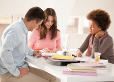 Multiethnic Group of College Students Studying Together Stock Image