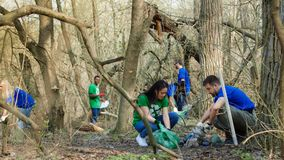 Volunteers collecting garbage in woods. Multiethnic group of volunteers walking in spring forest and picking trash into plastic bags Royalty Free Stock Image