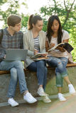 Multiethnic group of young concentrated students Royalty Free Stock Photography