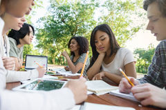 Multiethnic group of young students sitting and studying Royalty Free Stock Photo
