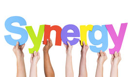 Multiethnic Hands Holding Text Synergy.  Royalty Free Stock Photos