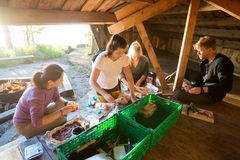 Coworkers Preparing Food In Shed At Forest. Multiethnic male and female coworkers preparing food in shed at forest Stock Image