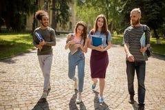 Multiethnische Studenten, die auf dem Campus am sonnigen Tag gehen Stockbild