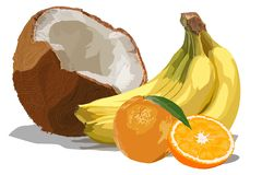 Multifruit on the isolated white background. The cluster of bananas, two oranges and the broken coco are drawn in  graphics on the isolated white background royalty free illustration