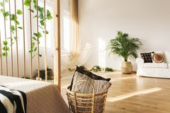 Multifunctional apartment with bed. Couch, plant and rope wall royalty free stock photo