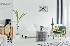 Multifunctional interior with white sofa. Carpet, armchair and houseplant royalty free stock images