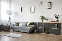Multifunctional living room area. With comfortable sofa stock photography