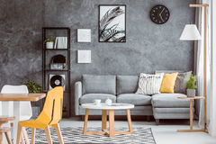 Multifunctional living room with plant. Multifunctional living room with dining table and plant on wooden stool near grey couch set with pillows royalty free stock images