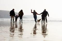 Multigeneratiefamilie die op de Winterstrand lopen met Hond stock foto's