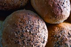 Multigrain印地安人Brun Pav面包大面包 免版税库存图片