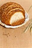 multigrain面包大面包  库存图片