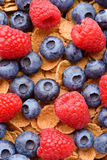 Multigrain muesli with berries Stock Images