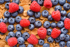 Multigrain muesli with berries Stock Photos