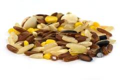 Multigrain Rice Stock Photos