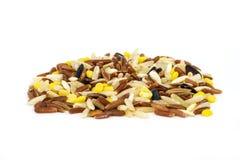 Multigrain Rice Royalty Free Stock Photo