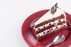 Multilayer cake on plate with spoon Royalty Free Stock Photo