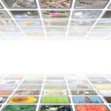 Multimedialny tło ilustracja wektor