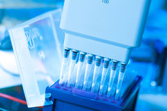 Multipipette Royalty Free Stock Photo