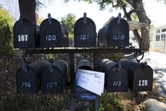 Multiple black mailboxes with one holding mail, Oak View, California, USA Stock Photography