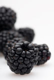 Multiple blackberries staggered in the depth. Arrangement of multiple blackberries staggered in depth to create a depth-of-field effect on a white background Stock Photo