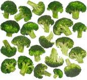 Multiple broccoli isolated - set Royalty Free Stock Photo