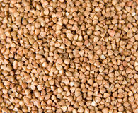 Multiple buckwheat seeds. May be used as a texture Royalty Free Stock Image