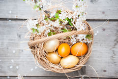 Multiple colored eggs in Easter basket Stock Image